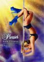Pleaser Pole Fitness V1